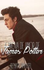 A Prova de Amor de James Potter by queerbaz