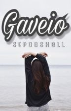 GAVEIO by stpdashell