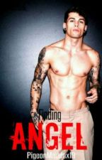 Finding Angel by _maddox