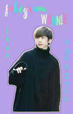 🐢 Wonnie's Fakegram 🐢 by SoyHyungWon