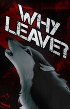 Why leave? (Yandere Werewolf X Reader) BOOK 2 -ONGOING by yanderousOtaku