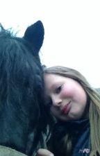 Dagboek van een paardenmeisje.                         (VOLTOOIT)  by marieke696