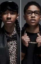the life of mindless behavior (a mindless behavior story) by mary167644