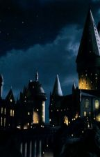 A YEAR AT HOGWARTS /Not a RP/ by GravyOnJello