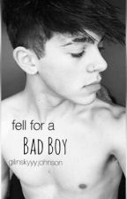 fell for a bad boy// mikey barone by gilinskyyyjohnson