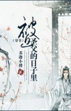 Bị bắt thánh phụ đích trong cuộc sống - Tô Già Tiểu Lâu by lamdubang