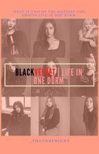 BLACKVELVET | Life In One Dorm by _thatonenight