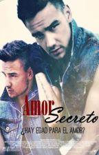 Amor Secreto (Liam Payne y tu) || Editando by xilyliamilyx
