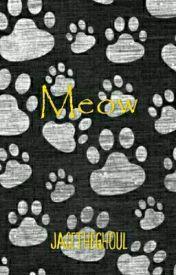 Meow. by iiJareBear