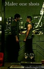 Book of Malec One Shots by niallersgirl139