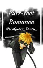 A purrfect romance~ [Adrien/Chat Noir x Reader] by NekoQueen_Fancy_