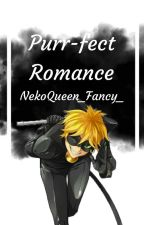 A purrfect romance~ [Adrien/Chat Noir x Reader] by NekoQueen_Fancy_