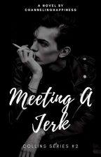 Meeting A Jerk (Collins Series #2) [ON-HOLD] by ChannelingHappiness