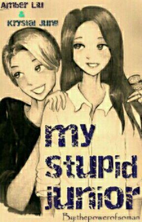 My Stupid Junior by thepowerofsoman