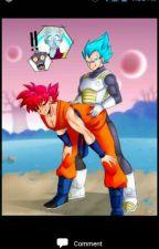Ssg Goku x Ssgss Vegeta by Kakarot_x_Goku