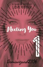 Meeting You- A Harry Potter Love Story (BOOK 1) by Demiwizard2106