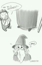 Funny Hobbit und LotR Pictures by PhaenariaFay