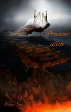 Prisonnier céleste  (bdsm) by leinnasama
