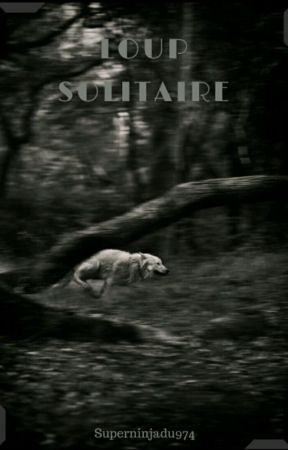 Loup solitaire by SuperNinjaDu974