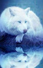 Little Wolf (boyxboy)(On Hold) by ShadowDawn2