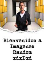 Bienvenidos a Imagenes Random xdxDxd by Xx404-Not-FoundxX