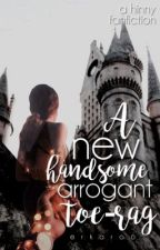 A New Handsome, Arrogant, Toe-rag ↠ Harry x Ginny ||Completed|| by Erkaroo
