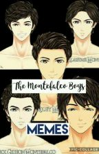 The Montefalco Boys Memes by VMinKook126