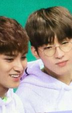 You And I - Mingyu & Wonwoo (MEANIE) by SCjoha28