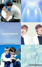 Just a yaoi story ( VKook) by YouraPark93