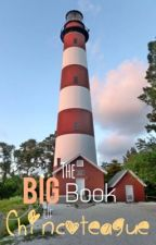 The Big Book of Chincoteague by EmmaTheEnderGirl