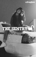 • The Sentry Π pjm & namjin • by ArmyLieber