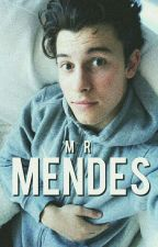 Mr Mendes ; s.m by HoldinMeBack