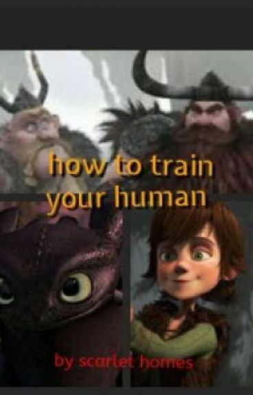 how to train your human  (how to train your dragon fanfic)