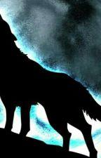 Je ze mě vlkodlak???!!! by KatkaTym