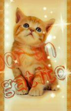 Por un gatito, ziall, nouis by ijwmys