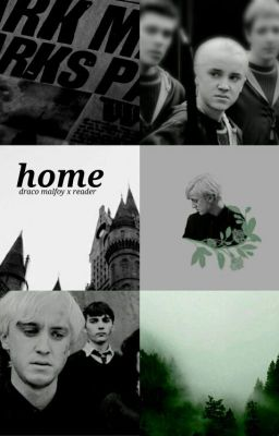 Draco Malfoy x Reader - Your Years At Hogwarts - Lee - Wattpad