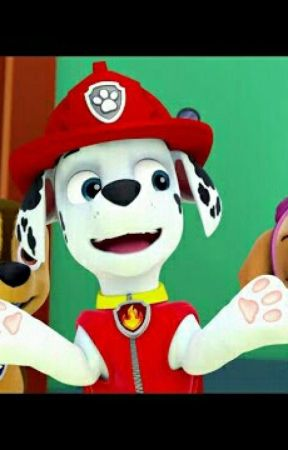For Us 2 with You In the Middle (A Paw Patrol FANFICTION