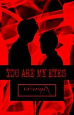 You Are My Eyes (Chanbaek) by vournix