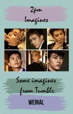 2pm Imagines by WeinaL