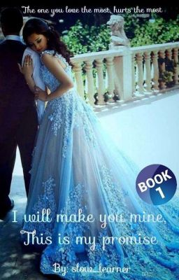 Promise i will make you mine book
