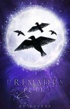 ›Premades‹ by chvxrx
