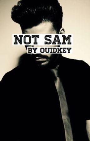 Not Sam by Ouidkey