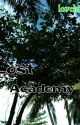 Lost Academy  by lovelove23forever