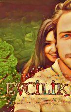 EVCİLİK// ALİ SELİN by birinciafrodit
