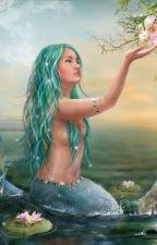 The Mermaid Book by SnowStormer121