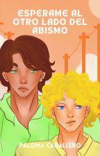 Espérame al otro lado del abismo by PalomaCaballero