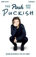 The Posh and the Puckish || zarry by the-ninja-knee
