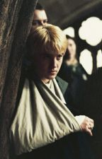 Mejores Amigos Enamorados❤ Draco Lucius Malfoy & TN... parte 1. by carolrowland123