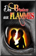 Des Braises aux Flammes by LenShadow