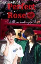 Perfect Rose by Sakura4884